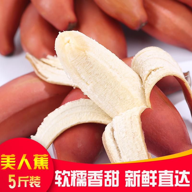 福建红美人香蕉5斤包邮【2500g】新鲜红皮香蕉软糯香甜孕妇水果香甜软糯 果大新鲜