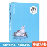 沈石溪主编选评 动物小说大王系列 勇敢的白海豹 动物小说精品少年读本