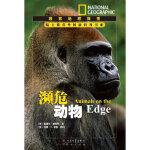 濒危动物---国家地理探索 (美)帕斯特,唐子健 天天出版社有限责任公司 9787501603664