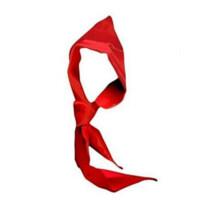 红领巾 小学生红领巾 1米 1.2米 1.5米红领巾 一二三道杠 尺寸可以选择哦