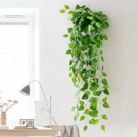 绿植挂壁墙饰空调下水管道装饰