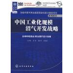 加速中国可再生能源商业化能力建设项目系列图书--中国工业化规模沼气开发战略