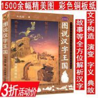 图说汉字王国(彩图版)说文解字详解图解汉字树汉字图解字典汉字