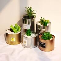 韩国铁质花盆银色金色工业风植物仙人掌多肉铁罐花瓶摆拍道具