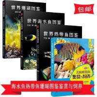 正版共4册世界海水鱼图鉴+世界热带鱼图鉴+世界珊瑚图鉴+美丽
