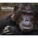 【预订】Tales from Gombe