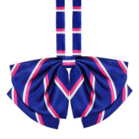 女学院风飘带领结蝴蝶结水手服新款蓝玫领花领结领绳