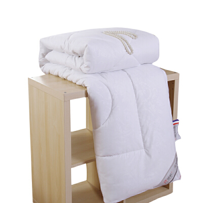全棉加厚冬被九孔春秋被保暖被芯丝棉被冬天学生宿舍双人冬季被子  180X220cm 8斤冬被