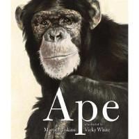 【预订】Ape