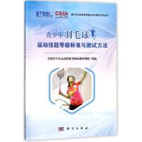 青少年羽毛球运动技能等级标准与测试方法/青少年运动技能等级标准与测试方法丛书