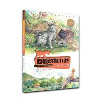 西顿动物小说:少年与山猫(彩绘版)