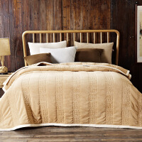 冬季法兰绒毯 毛毯加厚保暖法兰绒单人双人午睡盖毯子 200*230cm ( 3.3kg)