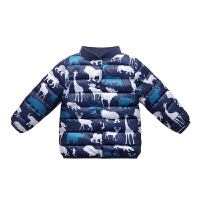 儿童棉衣男童女童宝宝羽绒冬装小童婴儿内胆棉袄童装外套