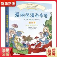 爱丽丝漫游奇境(彩绘注音版) 棒棒糖童书馆 9787518045723 中国纺织出版社 新华书店 品质保障