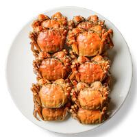 【现货鲜活】速鲜 江苏六月黄大闸蟹 新鲜公母蟹实物 海鲜水产 998型10只公2.0两/母1.8两