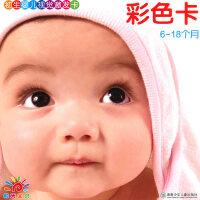 初生婴儿视觉激发卡彩色卡(6-18个月)