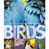 The Illustrated Encyclopedia of Birds 英文原版 DK鸟类图解百科