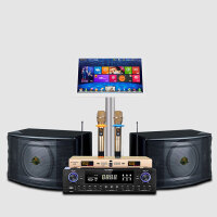 2018新款 丹麦之笙KTV音响套装 10寸卡包K歌音箱工程全套 +功放机+点歌机+麦克风