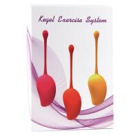 凯格尔缩阴器球私处紧致锻炼高潮性工具阴道哑铃情趣性用品GD 三个重量一套+送液+送润滑油
