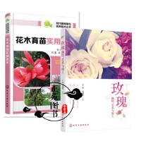 2册 玫瑰 栽培 艺术与加工+花木育苗实用技术 玫瑰花栽培种植技术书籍 病虫害防治技术 花卉生产 玫瑰精油萃取提炼 花