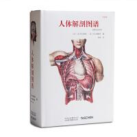 taschen中文版 人体解剖图谱:中英法拉对照Altas of Human Anatomy 人体手绘手稿彩色图谱 探索人体解构的奥秘医学艺术