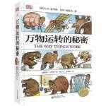 DK万物运转的秘密:给青少年的物理世界入门书 专业畅销书籍 童书万物运转的秘密(给青少年的物理世界入门书)