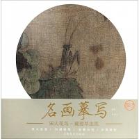 宋人花鸟(葡萄草虫图)/名画摹写
