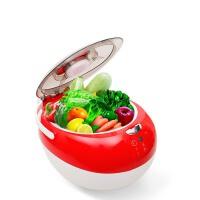 家用果蔬消毒清洗机水果解毒臭氧机消毒机全自动洗菜机