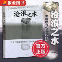 沧浪之水阎真著活着之上人民文学出版社中国现当代小说爱情小