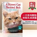 一只名叫鲍勃的流浪猫 英文原版书 A Street Cat Named Bob 同名电影小说 遇见一只猫 流浪猫鲍勃