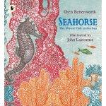 英文原版 儿童绘本 海马:海中最羞涩的动物 Seahorse: The Shyest Fish in the Sea