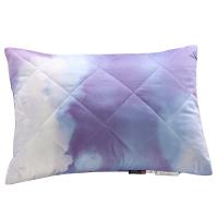 家纺儿童枕头枕芯单人枕 儿童枕 腰靠学生枕 儿童枕【35*50cm,花型随机】