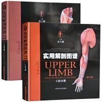 正版 实用解剖图谱套装 (第3三版) 上下肢共2册 高士濂 精装彩色人体解剖 骨科手神经普通外科临床医师教学科研工具书