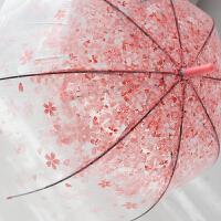 创意长柄自动透明雨伞女日系唯美韩国小清新直柄樱花雨伞公主拱 直柄樱花 粉色