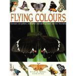 【预订】Flying Colours: Common Cate[r]pillars, Butterflies, and