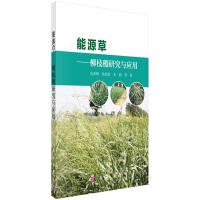 能源草――柳枝稷研究与应用