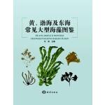 黄,渤海及东海常见大型海藻图鉴