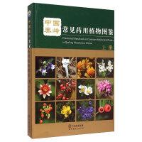 中国秦岭常见药用植物图鉴 上册精装版 植物学中药学系列丛书植物学中药学类书籍 天然药用植物资源研究方面的新成果和新发现