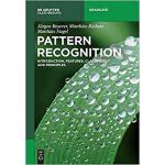 【预订】Pattern Recognition 9783110537932