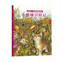 小猫咪冒险记(精装)