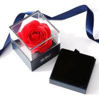 项链女银锁骨链吊坠情人节礼物送女友镶施华洛世奇锆 【家】配40CM项链+花盒+证书