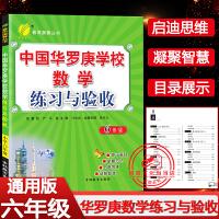 中国华罗庚学校练习与验收六年级小学生数学思维训练提优训练册2021版