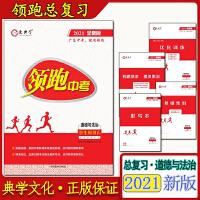 2019广东版 领跑中考 化学 广东中考 领跑中考化学