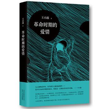 革命时期的爱情(pdf+txt+epub+azw3+mobi电子书在线阅读下载)