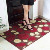入户门进门口地垫门垫定制凸形门厅客厅地垫脚垫入门垫子地毯门垫