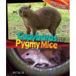 【预订】Capybaras and Pygmy Mice