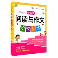 正版现货 小蜜蜂 小学生阅读与作文阶梯训练 6年级/六年级 名师点拨 快速提升写作能力 中国电影出版社 小学生阶梯训练