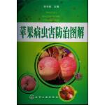 苹果病虫害防治图解