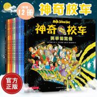 神奇校车 第一辑全套12册 在人体中游览 神奇的校车系列 奇妙的蜂巢图画书版7-8-10-11-12岁少儿科普百科绘本