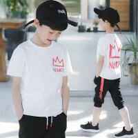 男童夏装新款套装夏季童装中大童纯棉帅气休闲运动男孩儿童